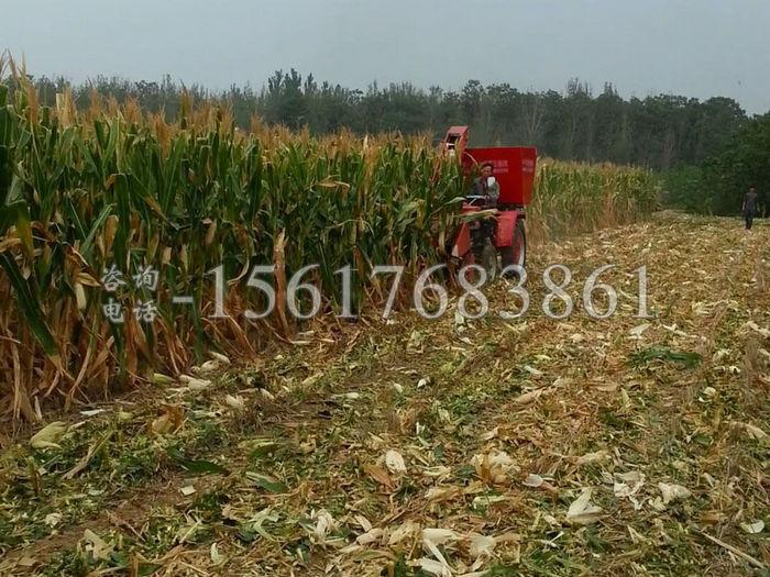 两行拖拉机玉米收割机