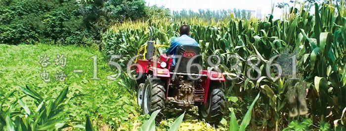 放堆式玉米收割�C